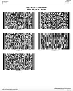 IMM1294 記入例 6枚目