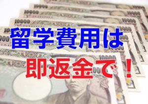 1万円札が沢山並んでいる